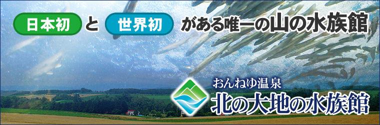 「日本一」と「世界初」がある北の大地の水族館